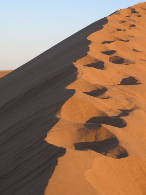sand desert dry