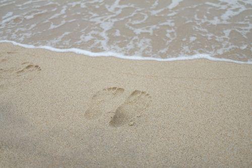 sand beach coast