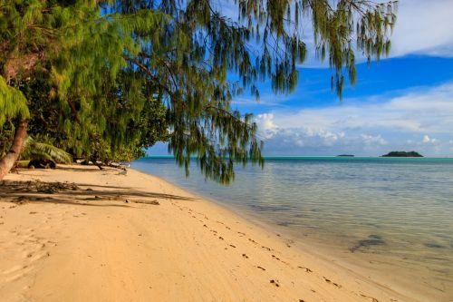 sand beach tropical