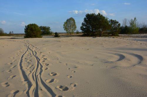 sand way dune