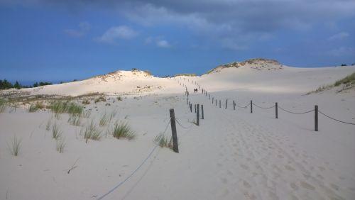 sand grass scrub