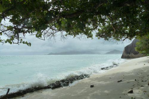 sand beach lonely beach sea