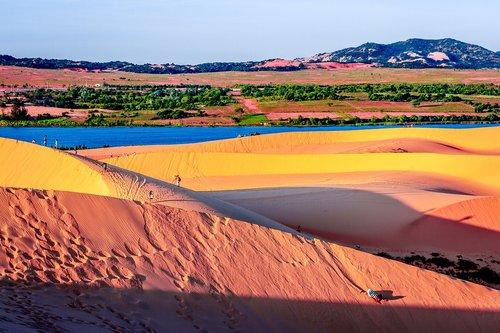 sand dunes  sand  dunes