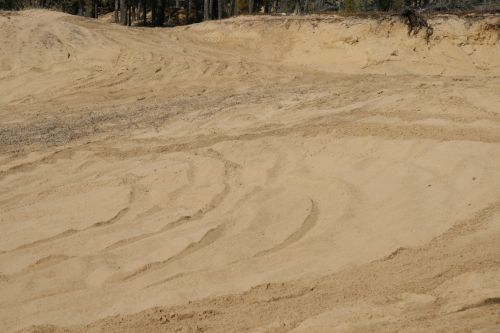 Sand Pit Forest