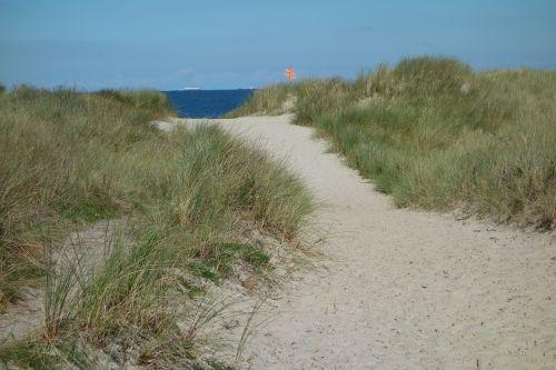 sand road dune sand dunes