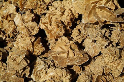 sand roses sahara desert