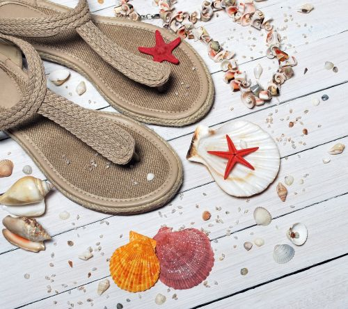 sandals seashells sea