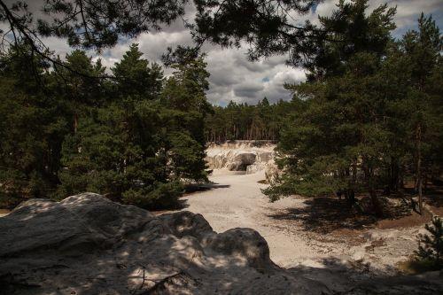 smiltainio urvai,derva,blankenburg,smėlio akmuo,Rokas,miškas,lipti,kraštovaizdis,gamta,Saksonija-Anhaltas,Vokietija,medis,liepa,vasara,šviesa,šešėlis
