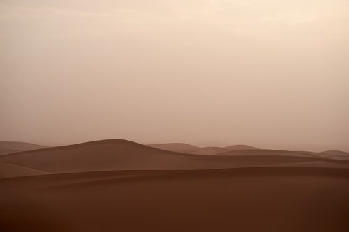 sandstorm  trueb  desert