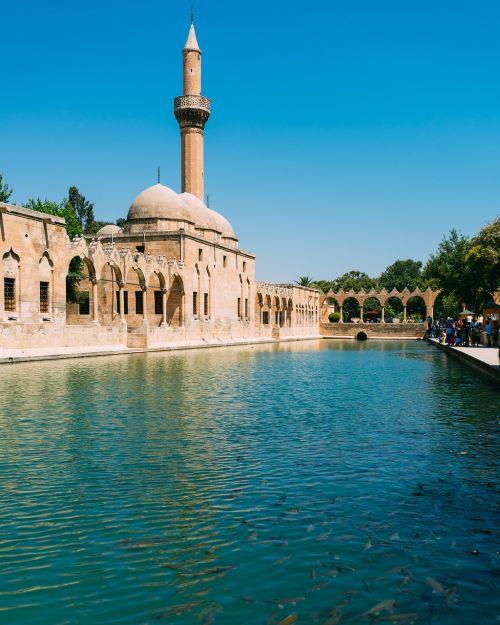 sanliurfa,urfa,balikligöl,karpis,Abraham,Ugnis,vanduo,Turkija,šiaurinis Turkija,mečetė,žuvis