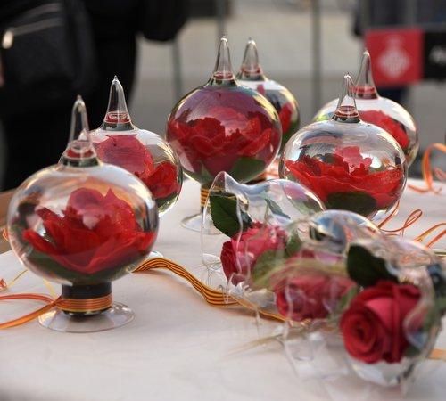 sant jordi  roses  glass