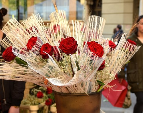 sant jordi  barcelona  roses