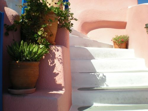 santorini stair flowers