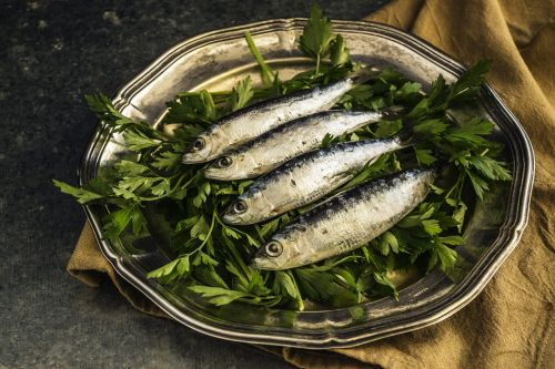 sardines fish lunch