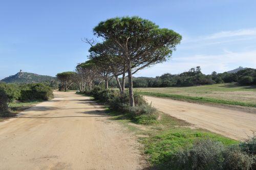 sardinia landscape steinig