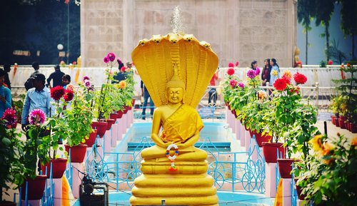 sarnath  buddha  sacred