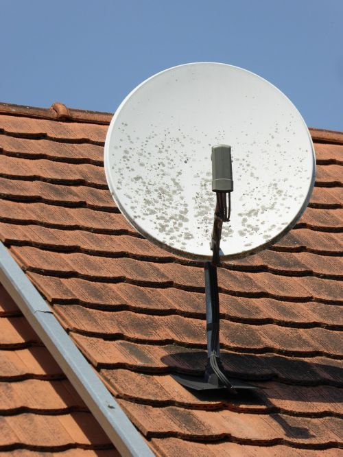 satellite dish tv watch tv