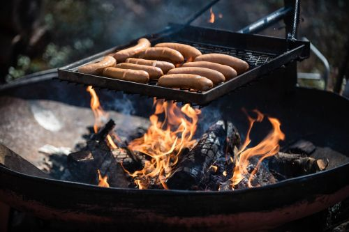sausages fire picnic