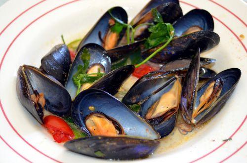 sautéed mussels mussels flat salentino