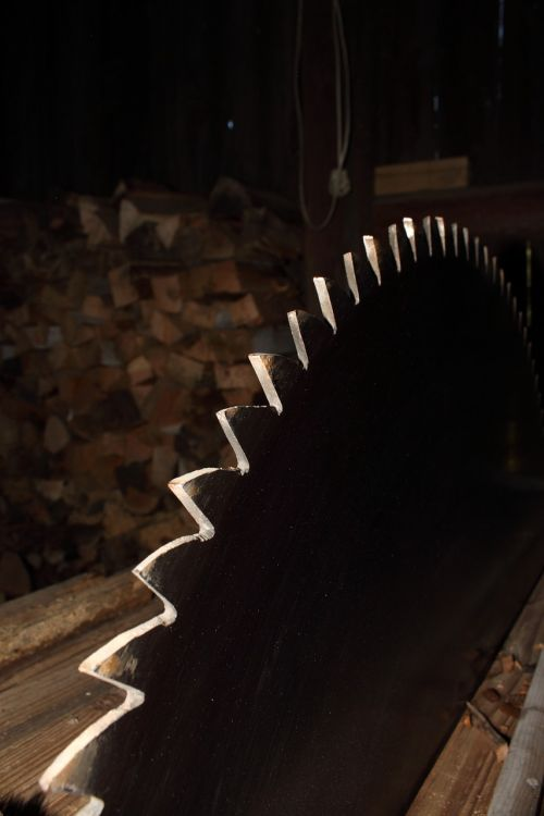 saw wood cutting