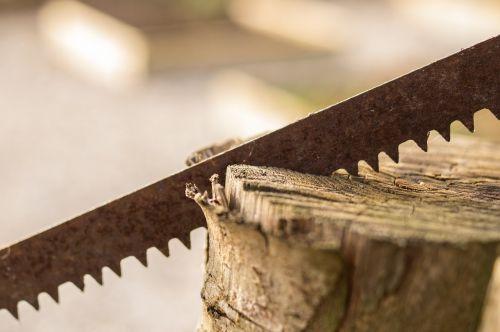 saw wood sawteeth
