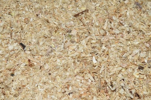 sawdust  abstract  mock up