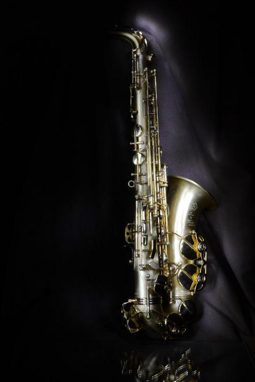 saxo alto jazz