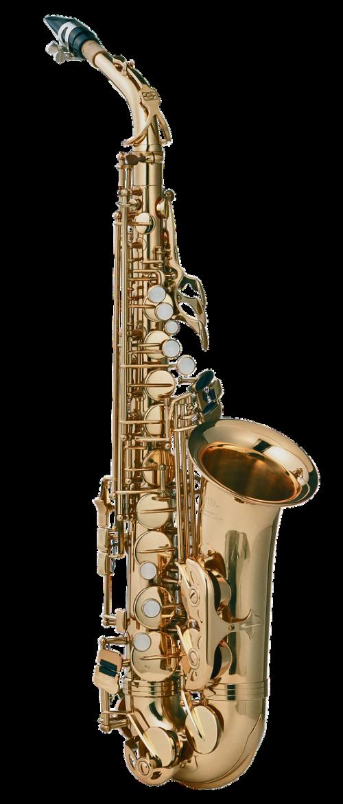saxophone musical instrument wind instruments