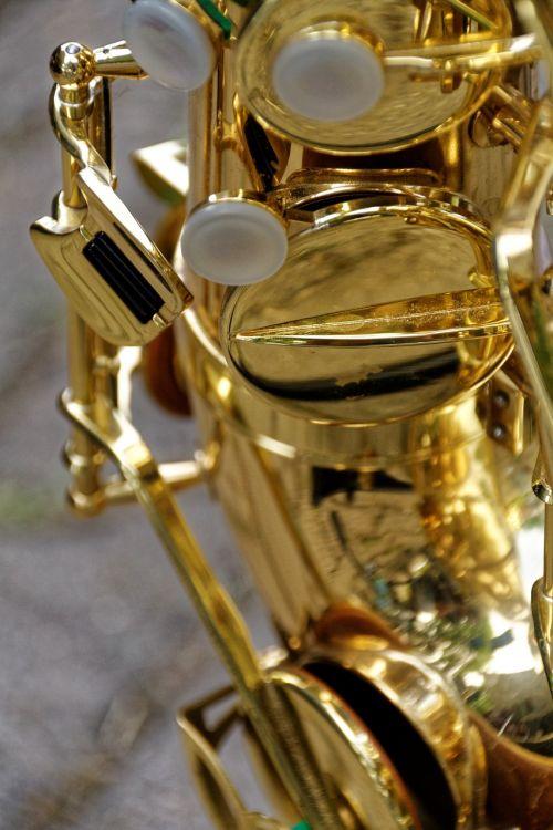 saxophone instrument musical instrument