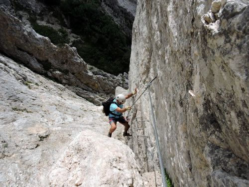 scale rock climber