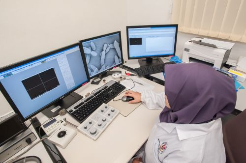 scanning electron microscope universiti malaysia sabah biotechnology research institute
