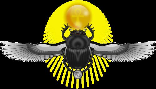 scarab bug wings