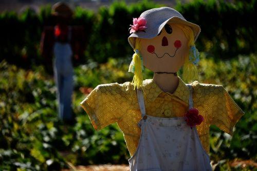 scarecrow lady yellow