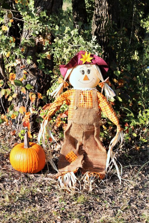 Scarecrow And Pumpkin