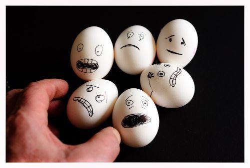 scared eggs egg food