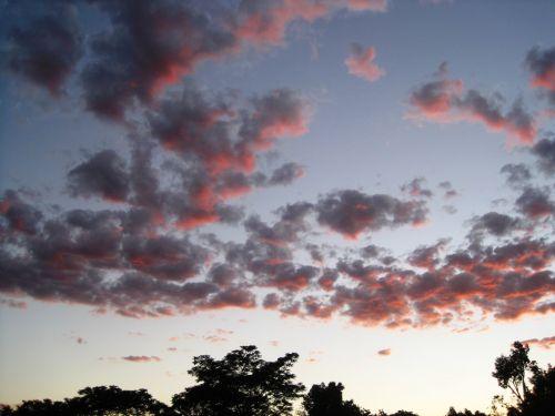 Scatter Of Orange Clouds