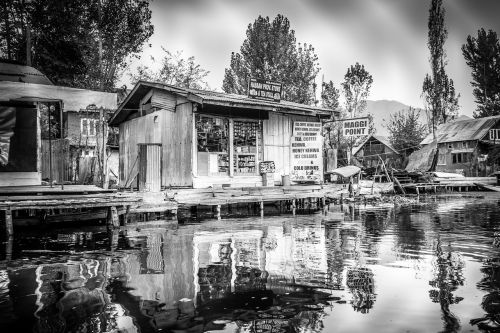 scene water dal lake