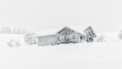 scene winter cold