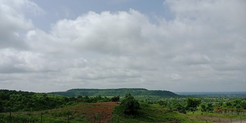 scenery  nature  greenery