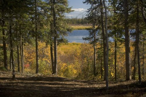 scenic landscape alaska