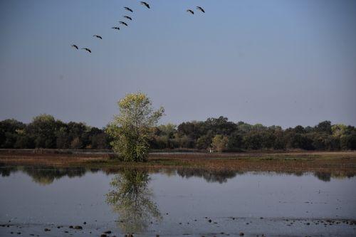 Scenic Of Sacramento Preserve