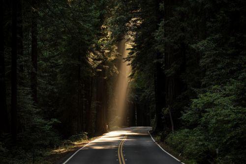 Scenic Roadway