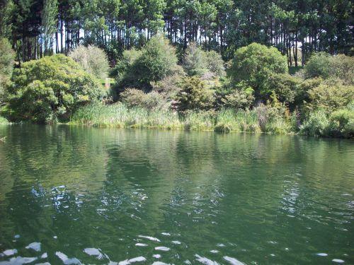 Scenic Swimming Hole