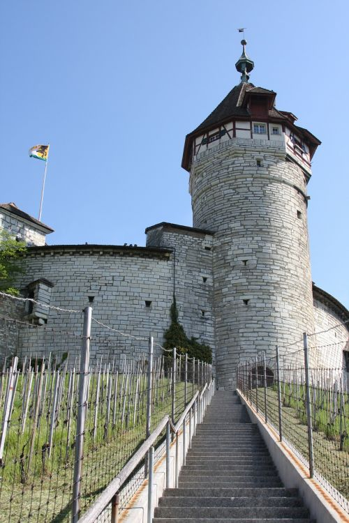 schaffhausen munot vineyard