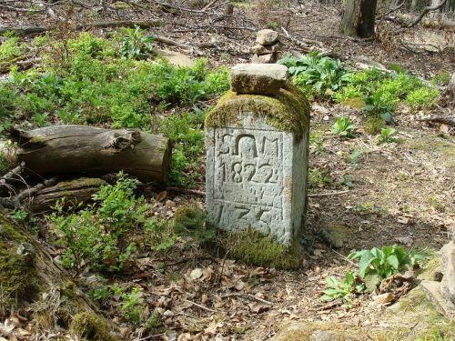 schafkopf, Palatinis miškas, ribinis akmuo, orientyras, akmuo, ženklas, simbolis, sienos