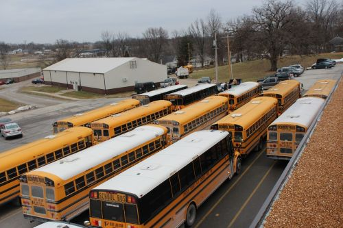 school bus school bus