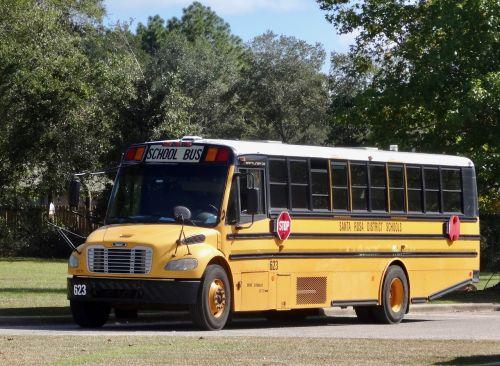 school bus yellow education