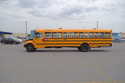 school bus side long