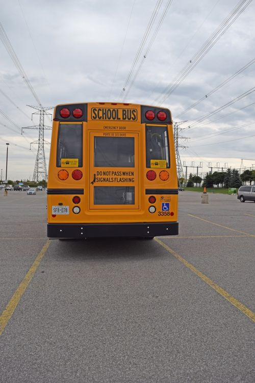 school bus back orange