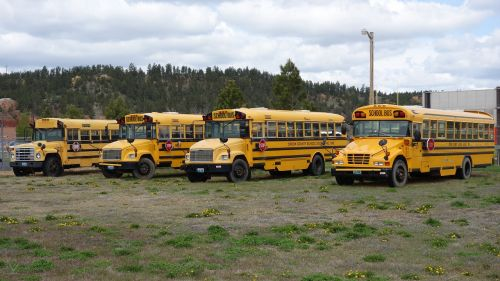 schoolbus yellow transport
